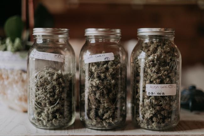 JENNIFER-SKOG-cannabis-farm-lifestyle_0153.jpg