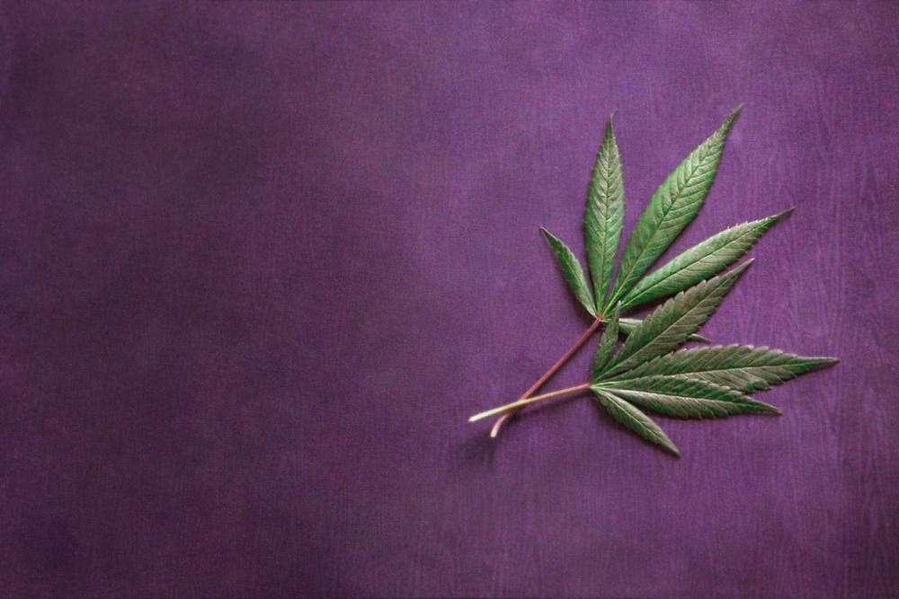 Marijuasana_Yoga_Mat_Cannabis_Leaves.jpg