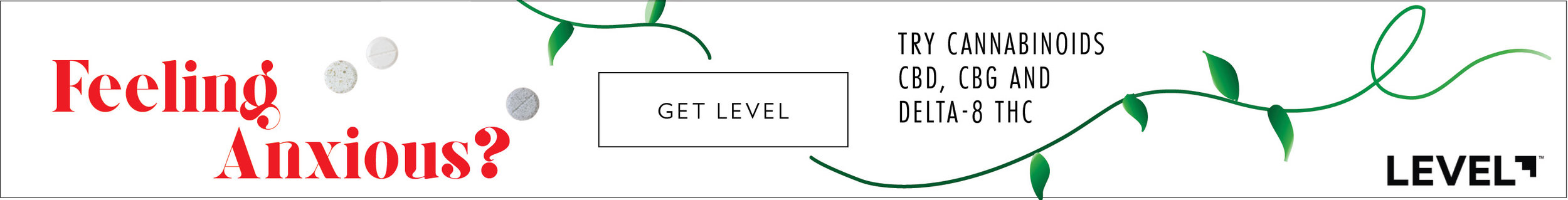Level Banner Ad 4.jpg