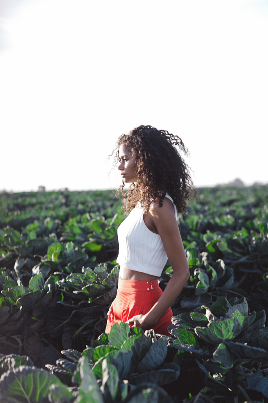 The start of real success with anything is knowledge, and today, we dive into selecting the best organic produce to fuel our ever-evolving bodies! -