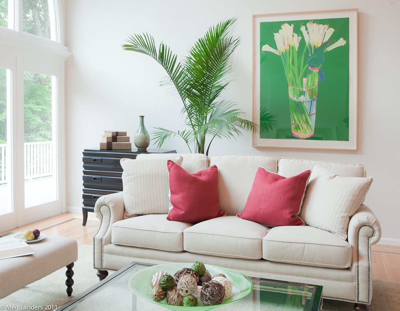 residential living room.jpg