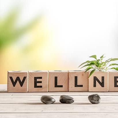 wellness image.jpg