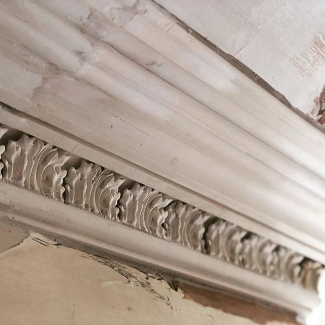Long live king George! We've successfully completed the sensitive restoration of this classical Cheltenham, Georgian cornice design, dating from the late eighteenth and early nineteenth century. #restoration #georgianhouse #cheltenham #cornice #cotswolds #decorators #painters
