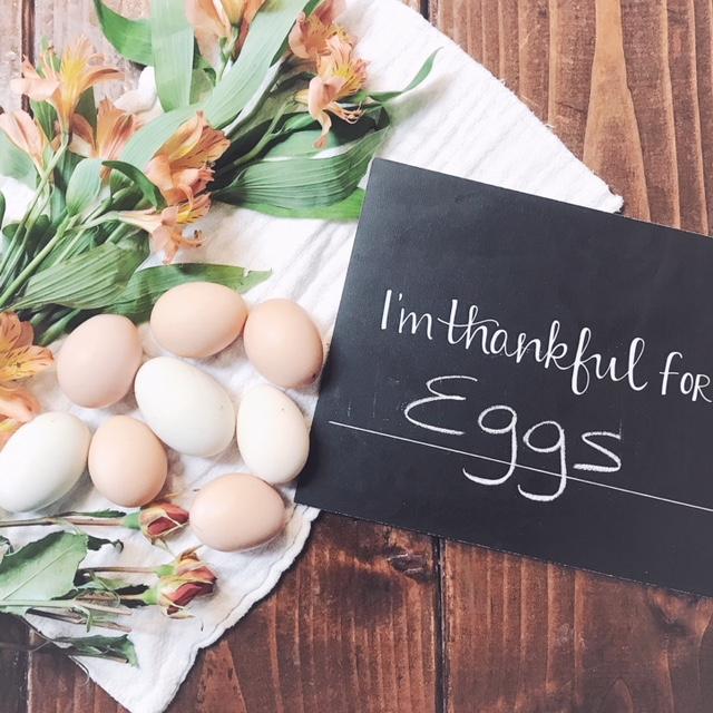 fresh-egg-art.JPG