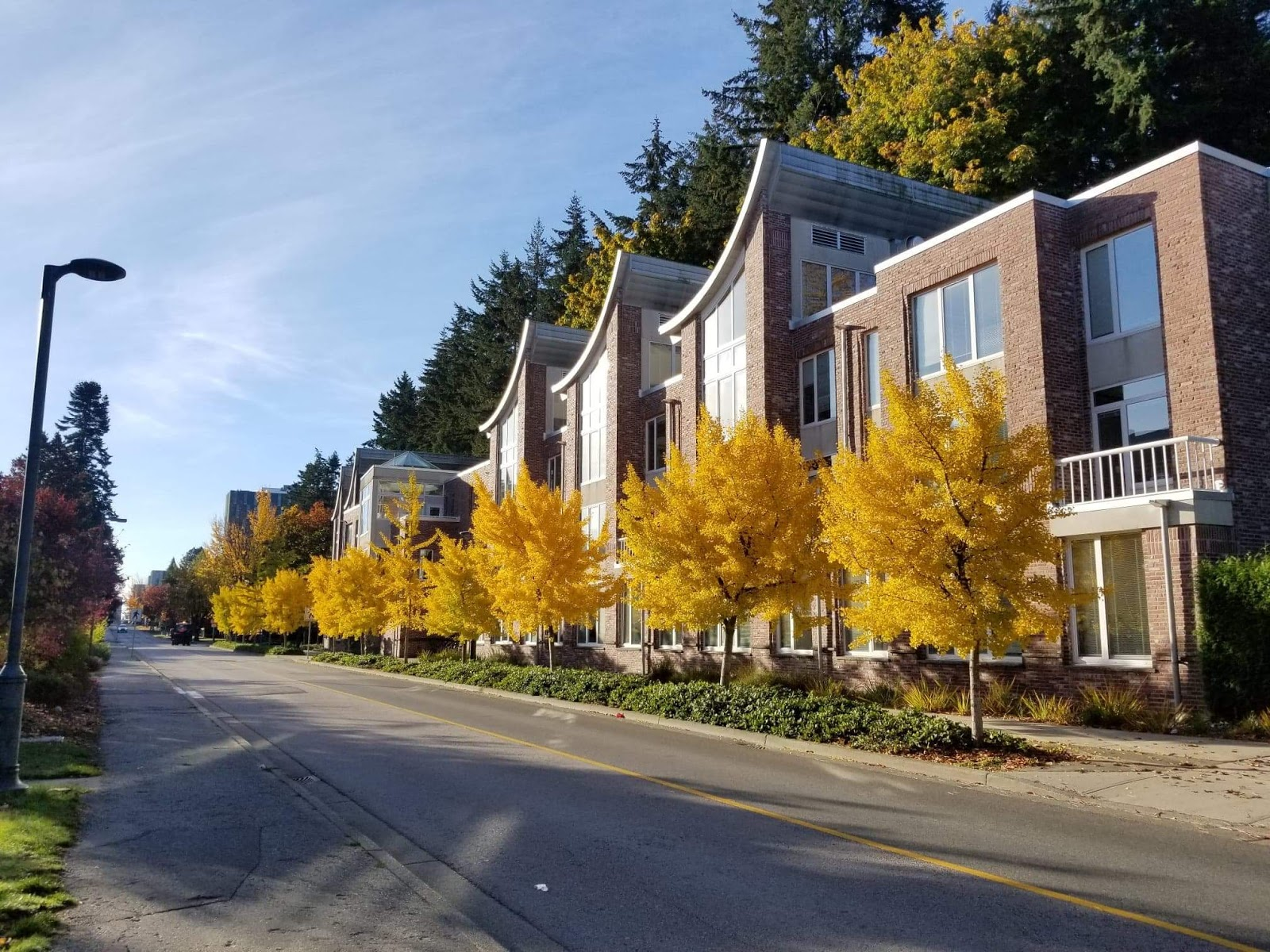 Built in 1996, the CK Choi Building for the Institute of Asian Research is not only UBC's first green building but one of the first green buildings in the world. (Schyler Edmundson)