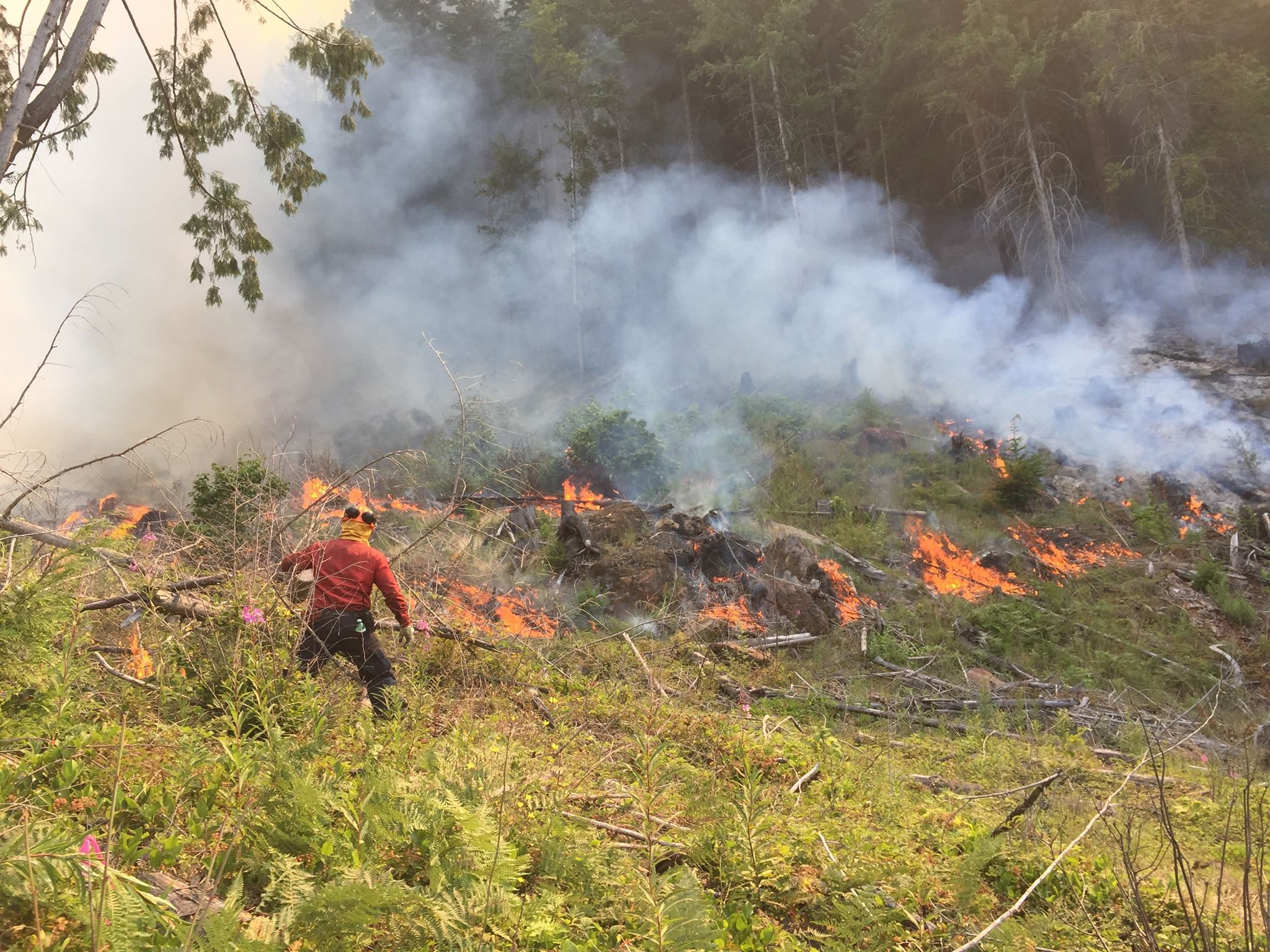 Rosales initiating a controlled burn to prevent wildfires from worsening.