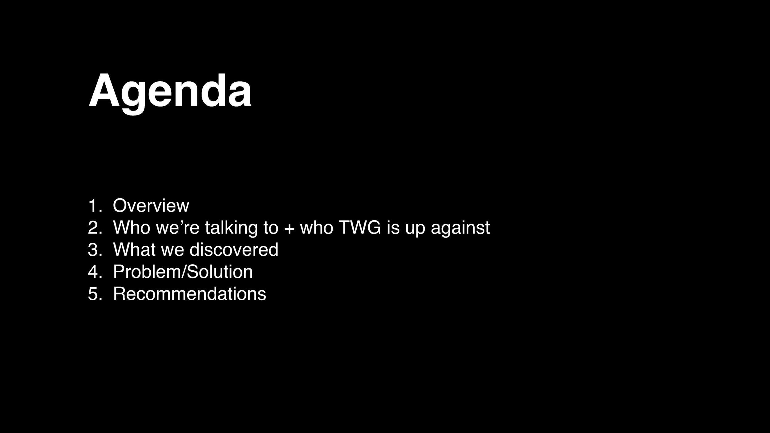 TwG.MAS Presentation  OCT 31_Page_02.jpg