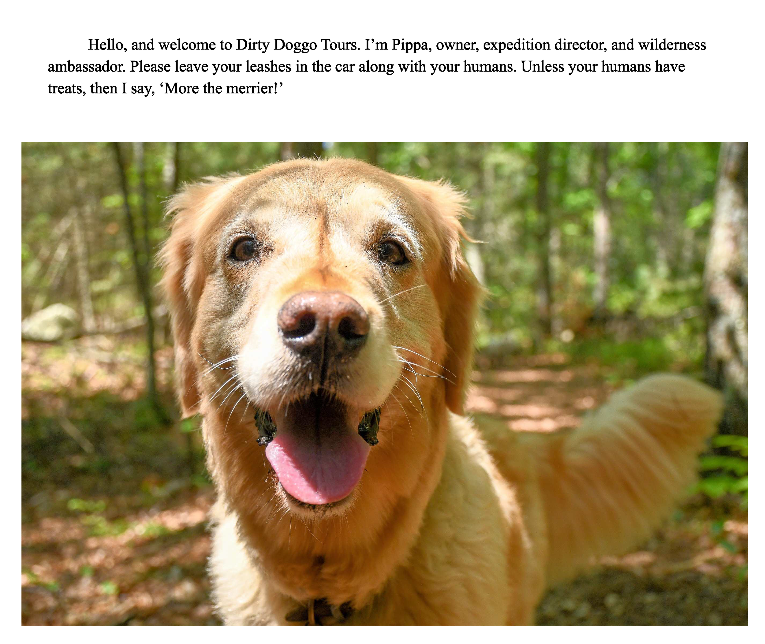 Pippa try_Page_05.png