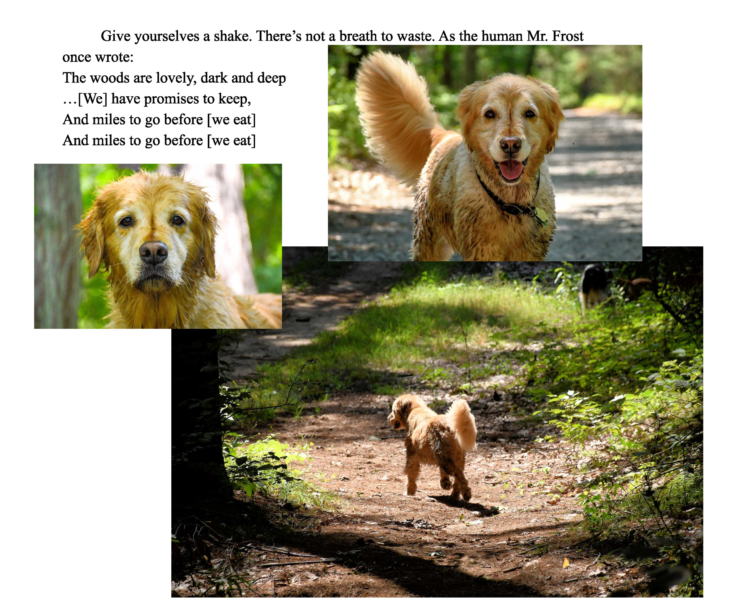 Pippa try_Page_22.png