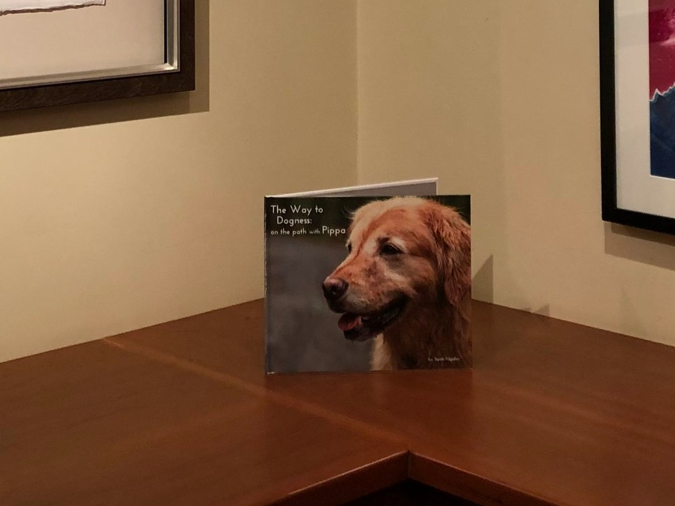photo storybooks - The Beautiful, Unique & Perfect for Every Dog Lover