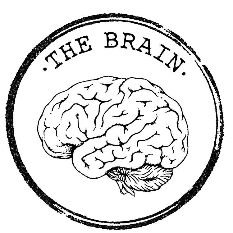 THE+BRAIN.jpg