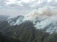 The Grose Valley fire