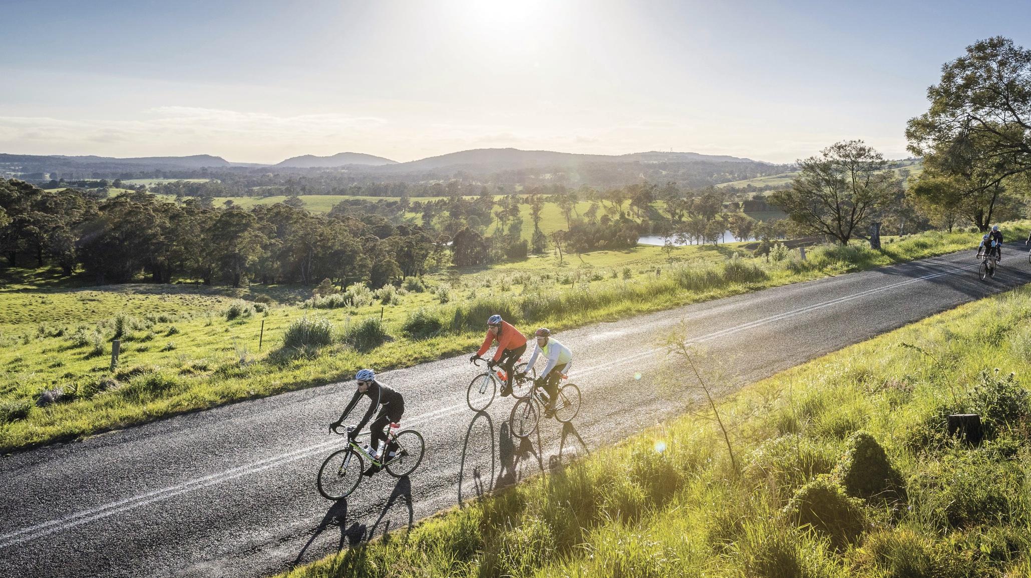 Photo: Southern Highlands, courtesy of Beardy McBeardy and  Destination NSW