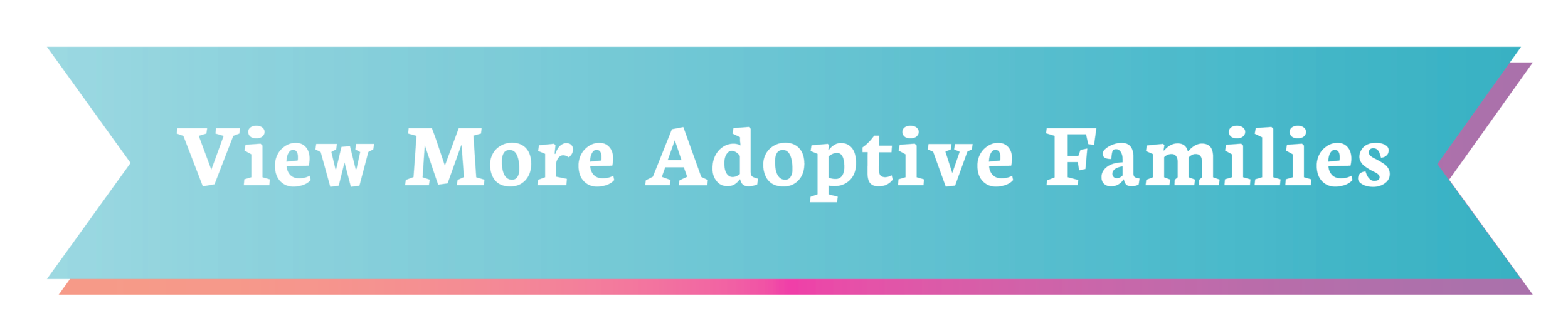 Jeff Katie Adopt Adoptive Parents Adoption Newborn Baby Unplanned pregnancy pregnant help