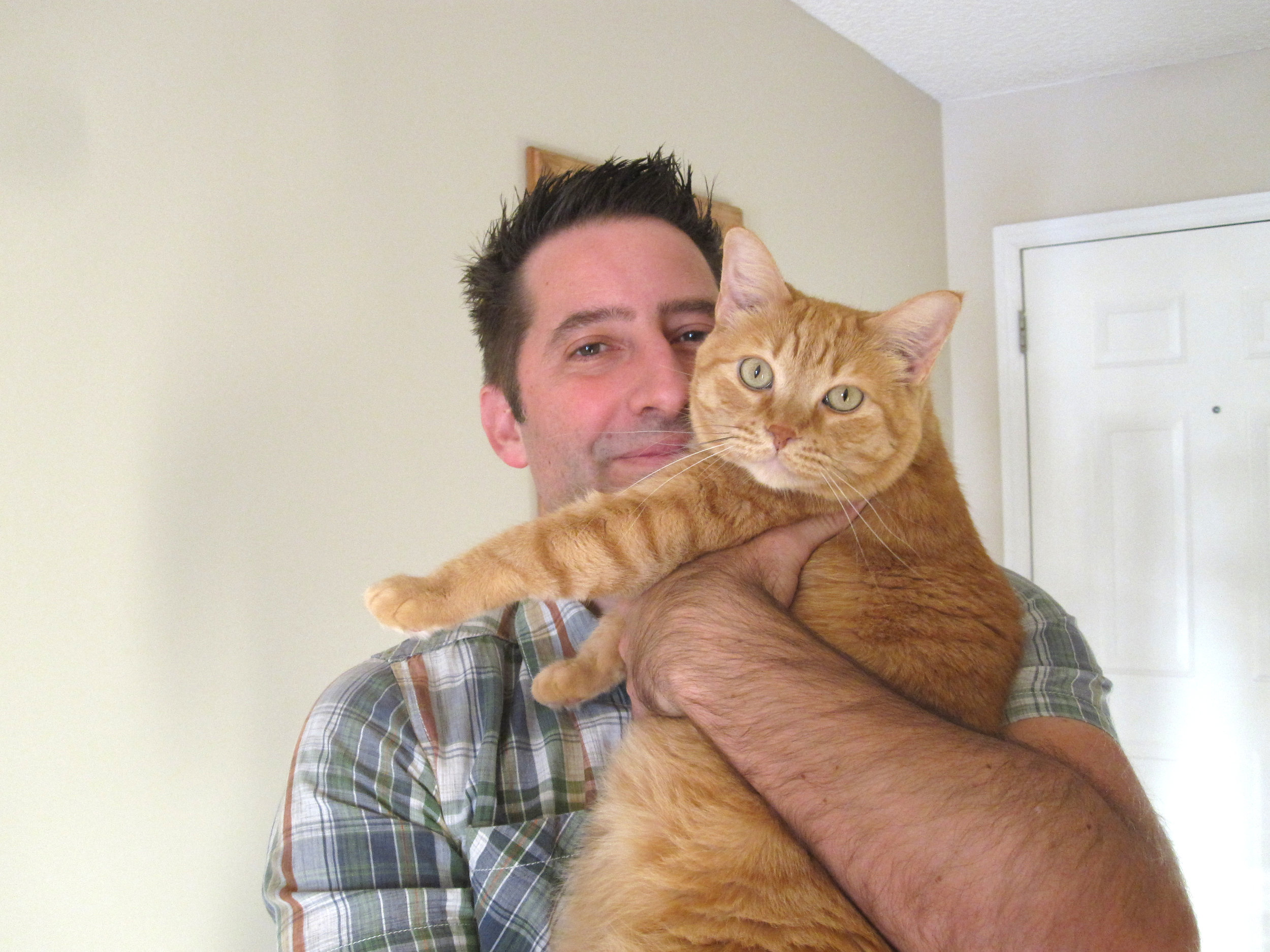 Our cat Valentino