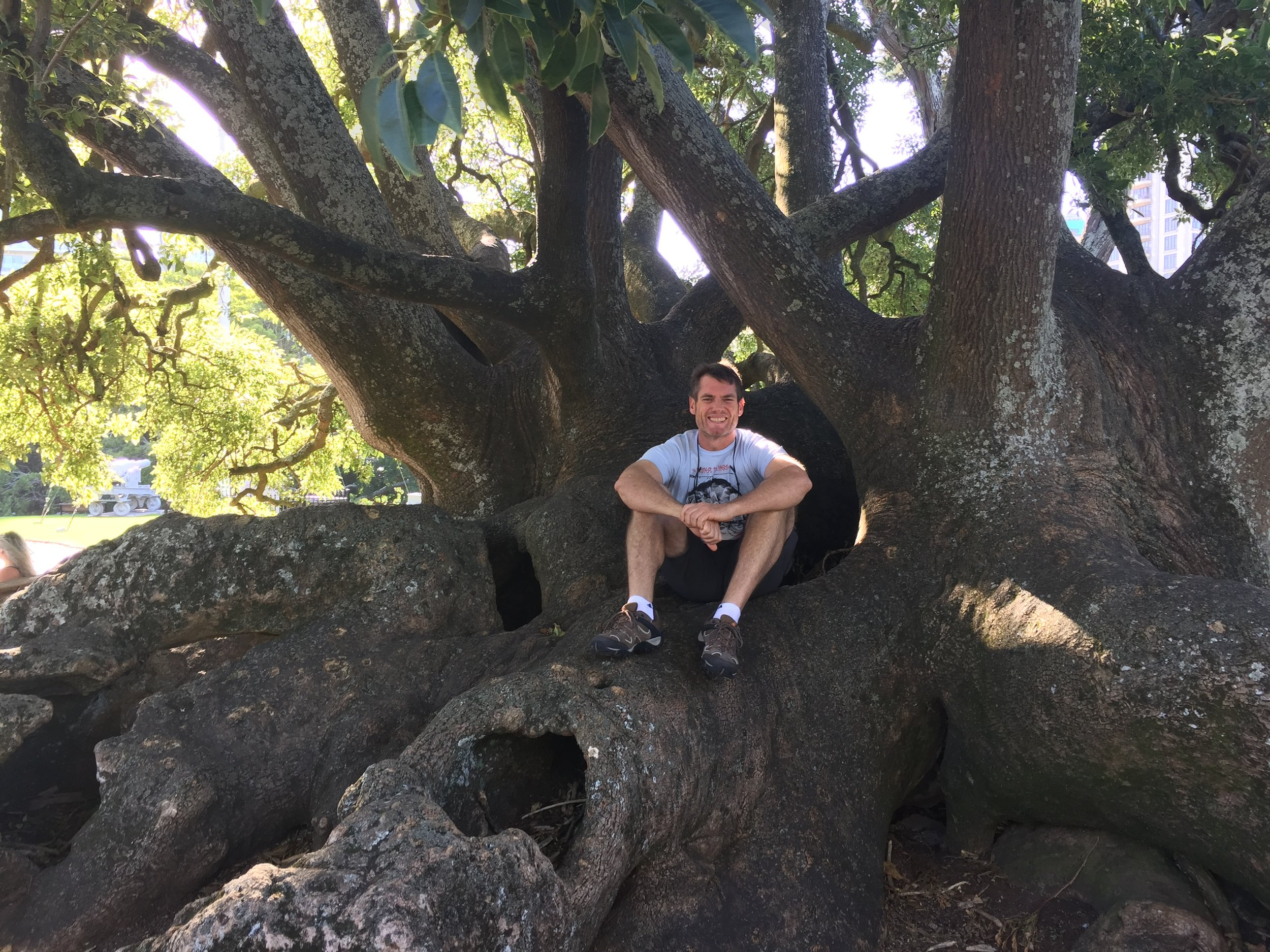 Never too old to climb trees