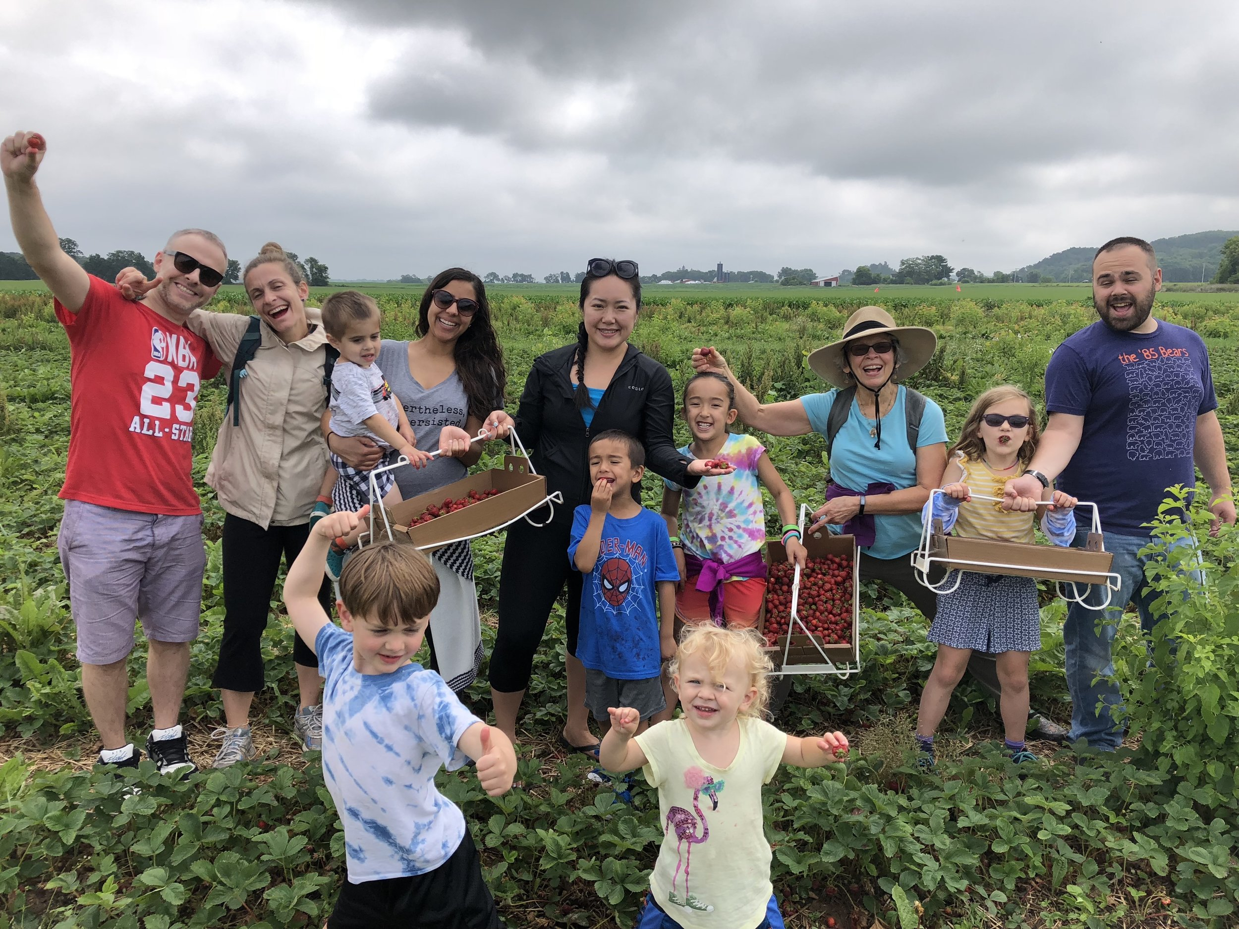 Strawberry picking with all of the cousins!