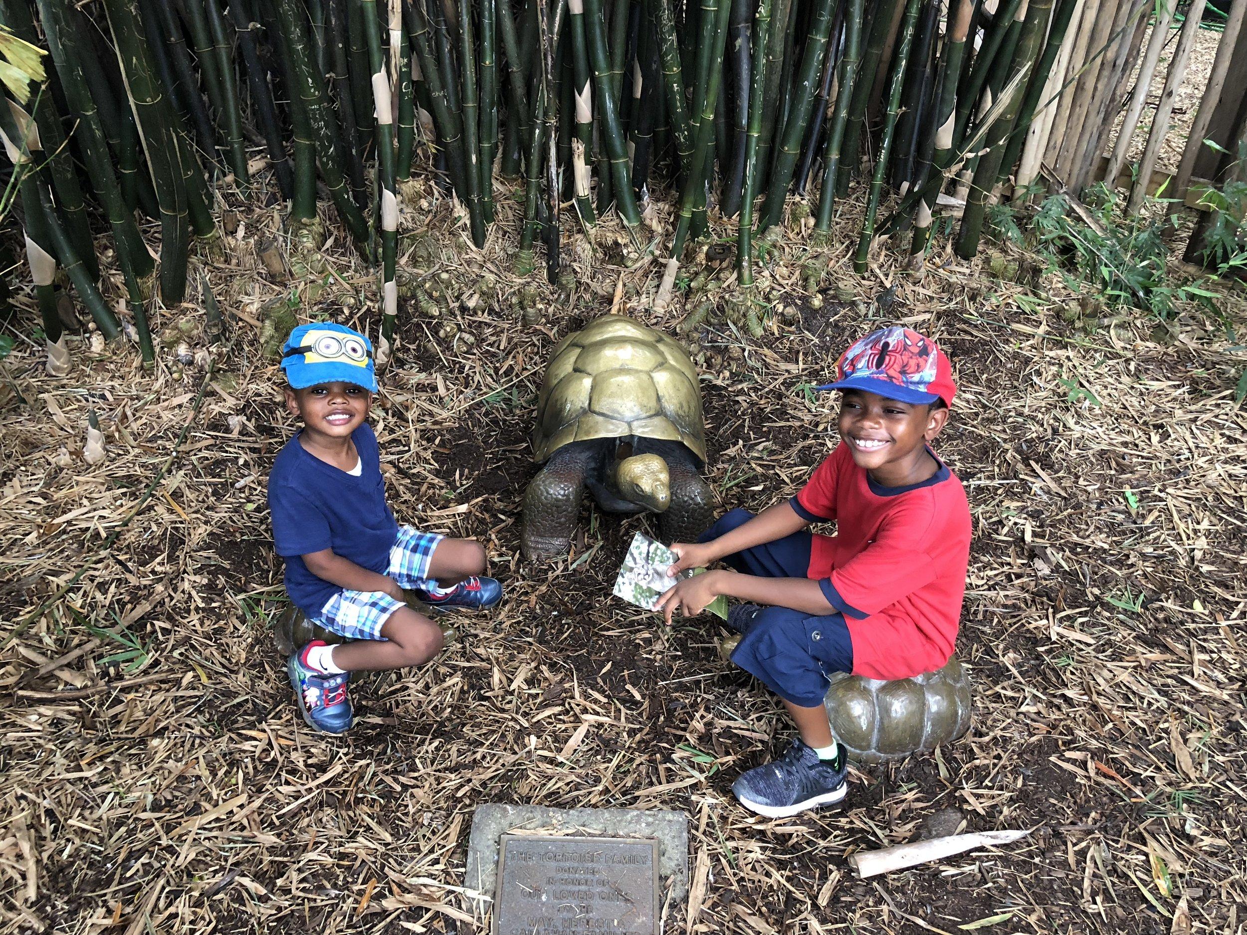 The boys at Palm Beach Zoo