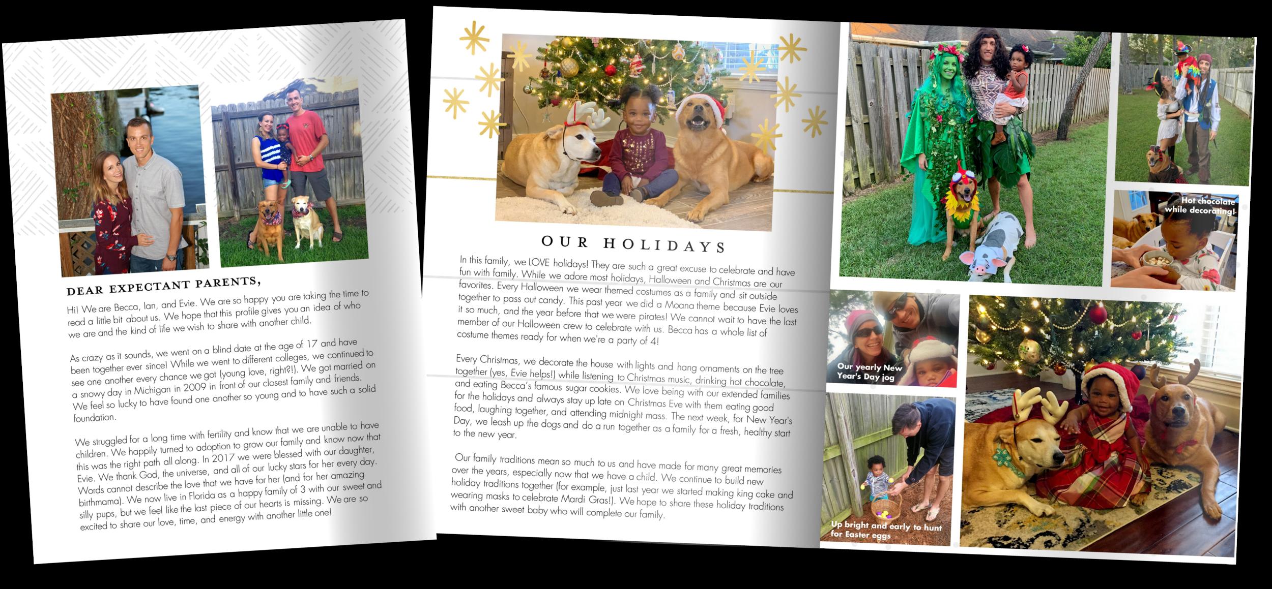 Adoptive parent adoption profile book for Becca and Ian