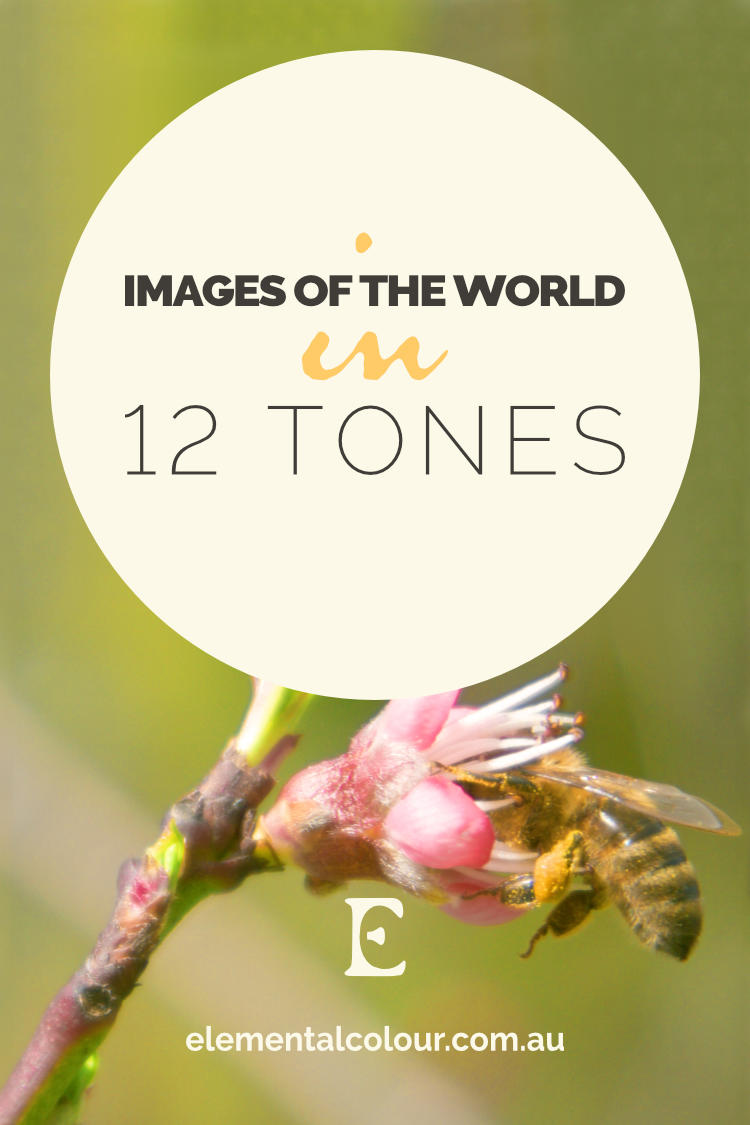 Images in 12 Tones:  Beautiful, inspirational photos of the world around us