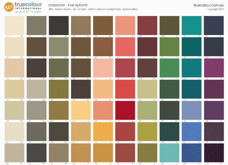 TCI True Autumn corporate palette