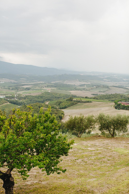 Tuscany_2014_23_AUG_NINMAX_WED-478.jpg