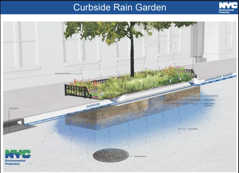 Diagram of how rain garden are designed