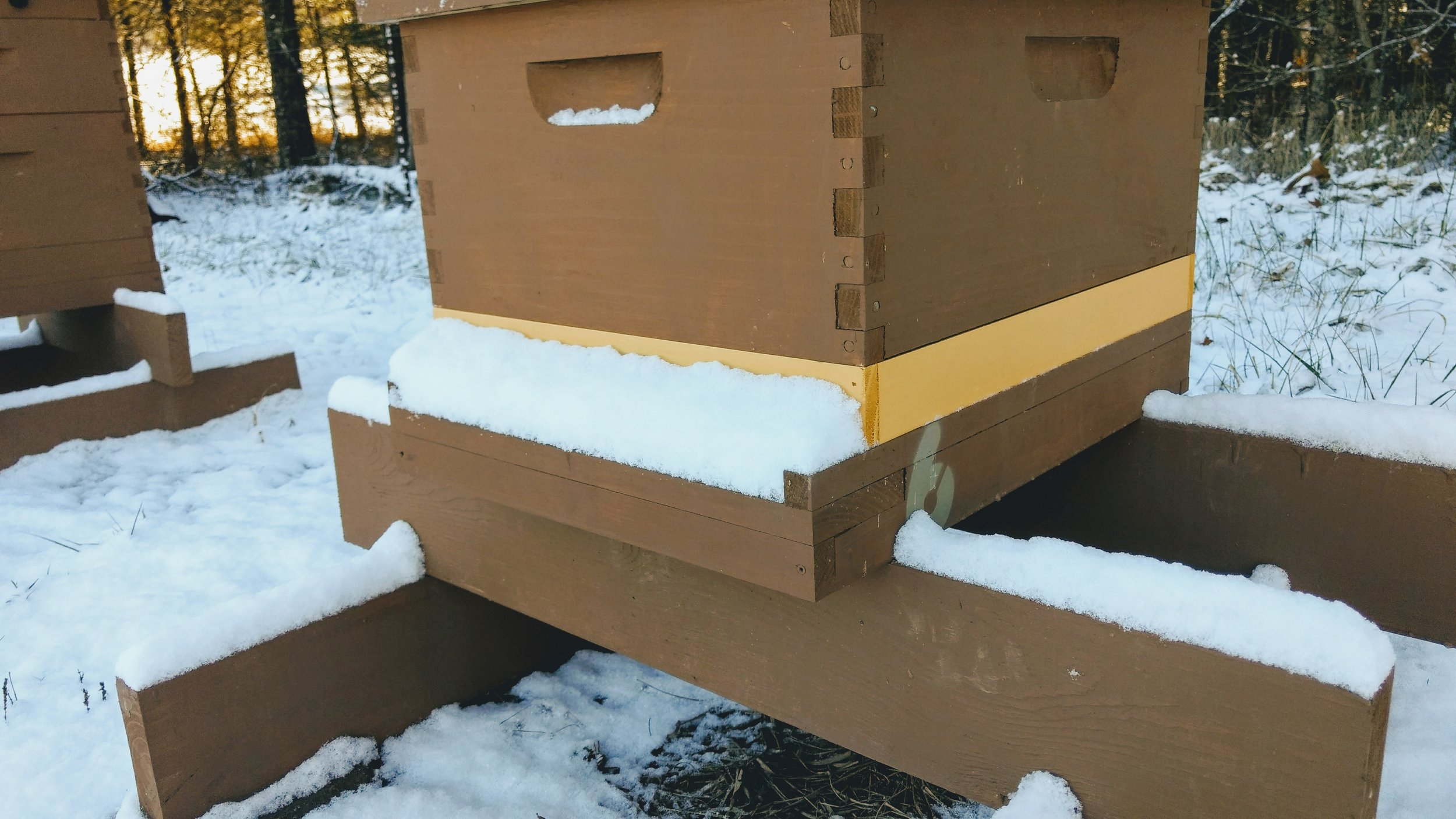 Hive without a snow visor