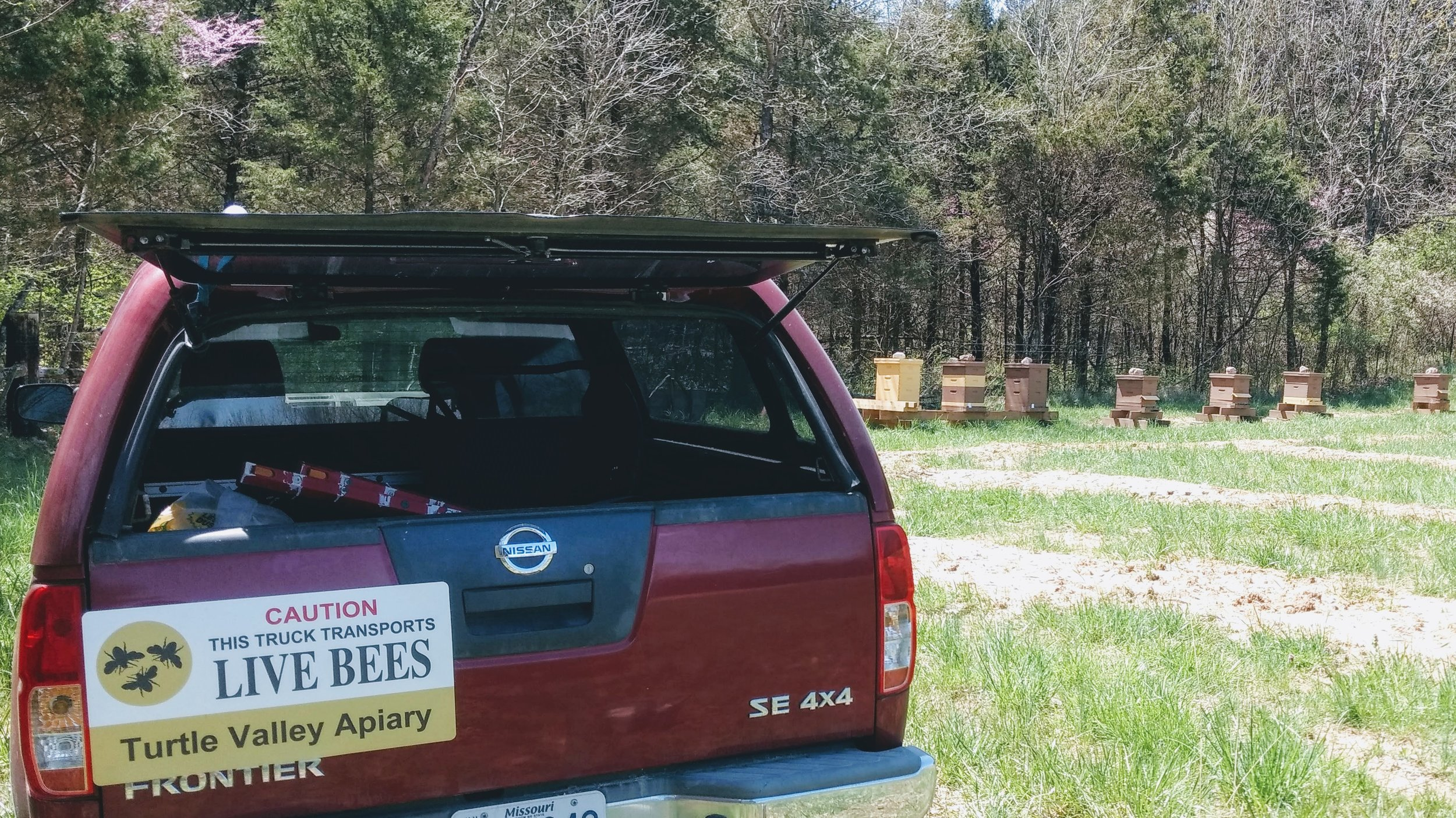 Transporting splits between bee yards