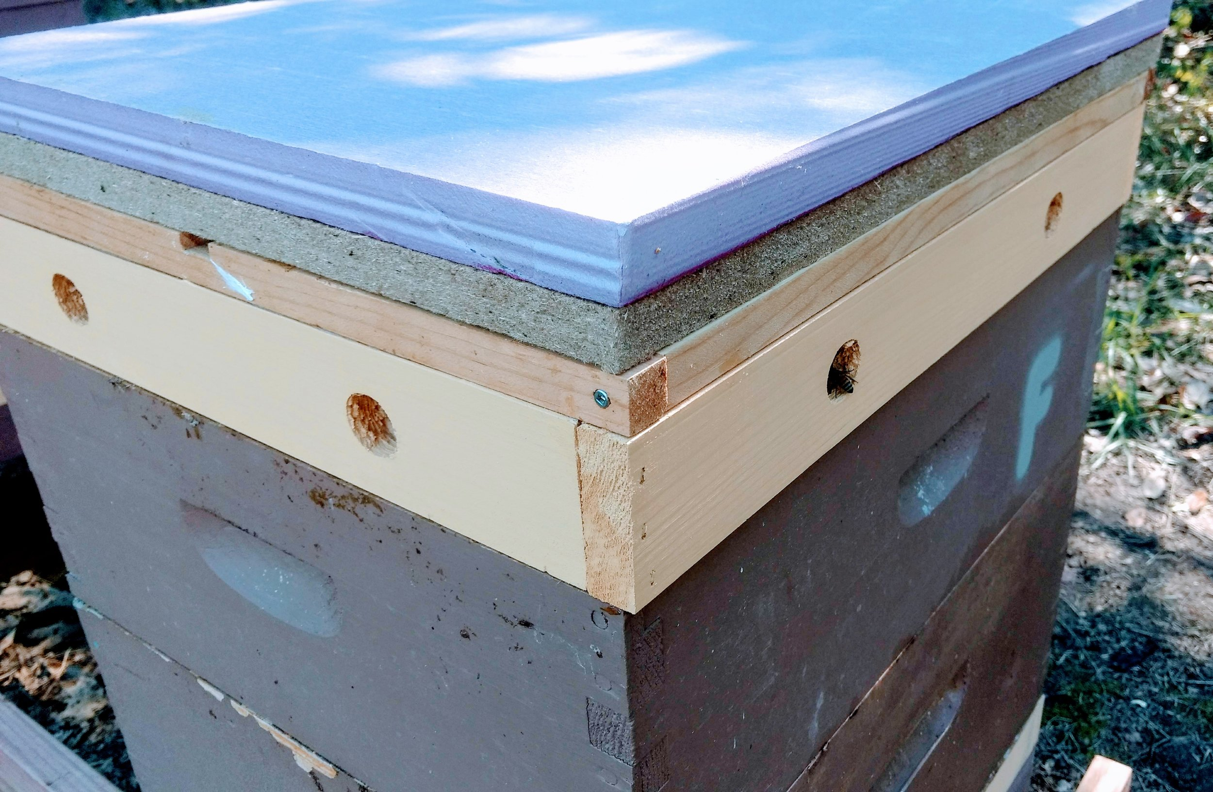 My winter hive setup