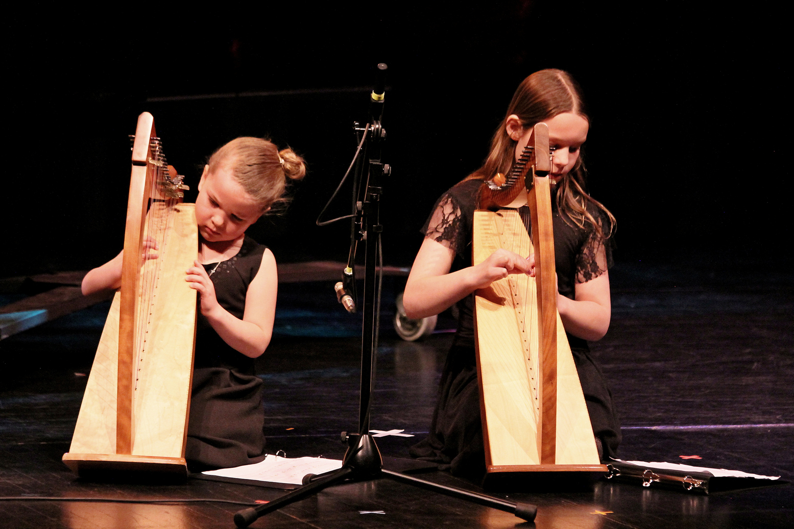 9 Ode To Joy, Inveraray Beginner Harp Duet 3.JPG