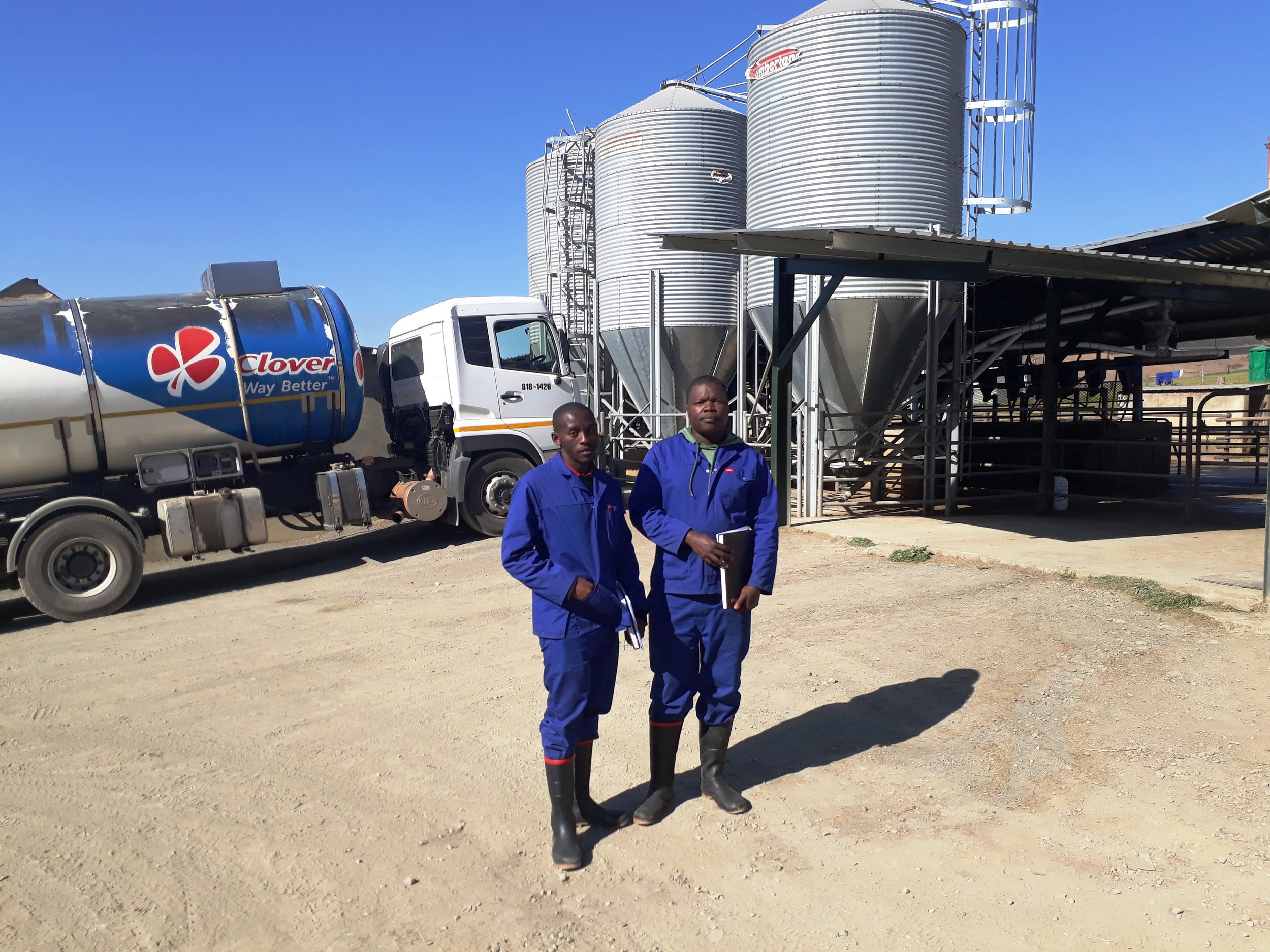 Asanda Jele (L) and Njabulo Makhatini (R) on the Stapylton-Smiths dairy farm near Donnybrook where they are doing their in-service training