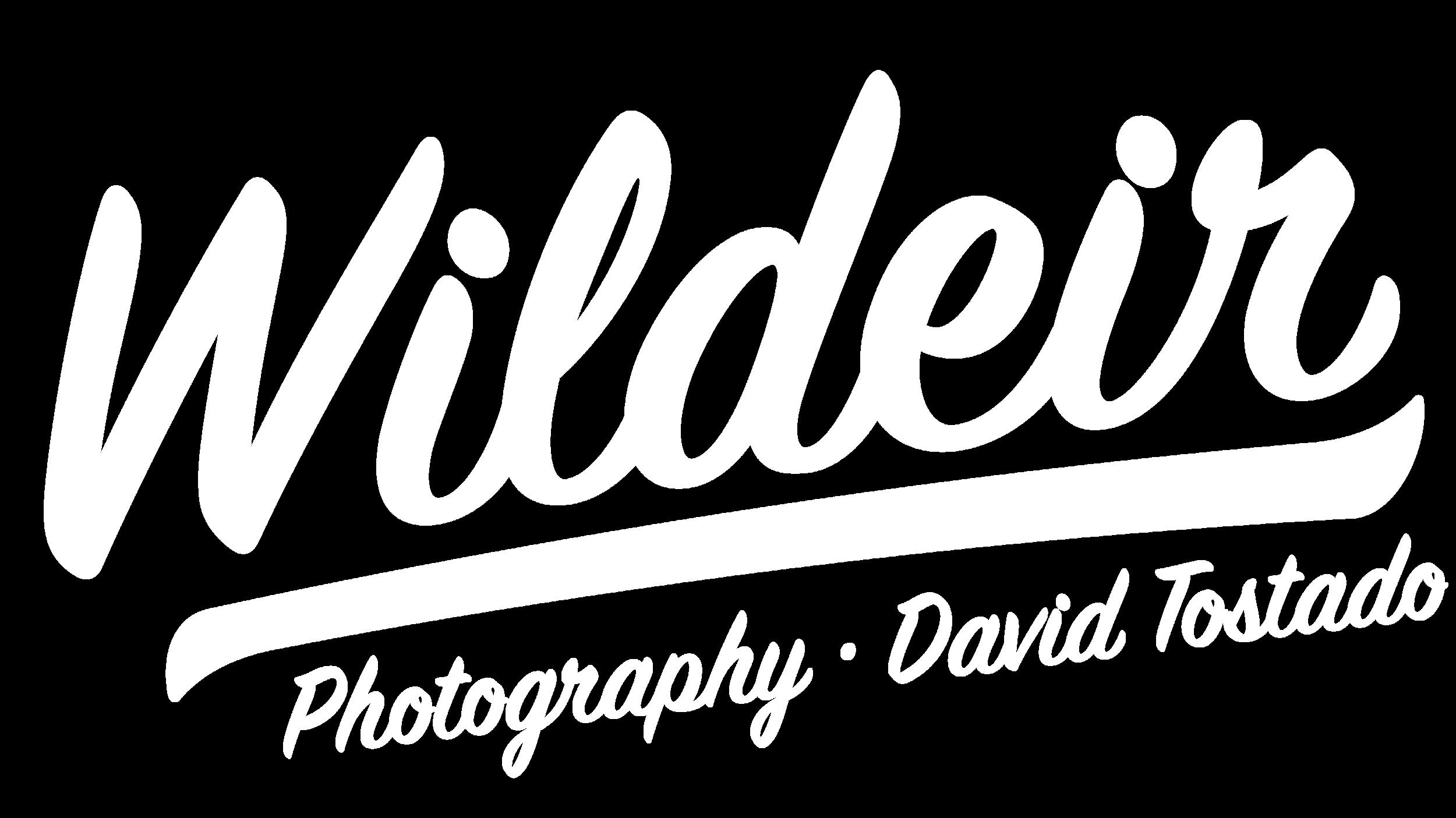Davids-Logo-2.png
