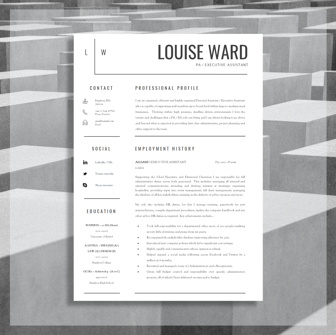 Download this Professional Resume Here.