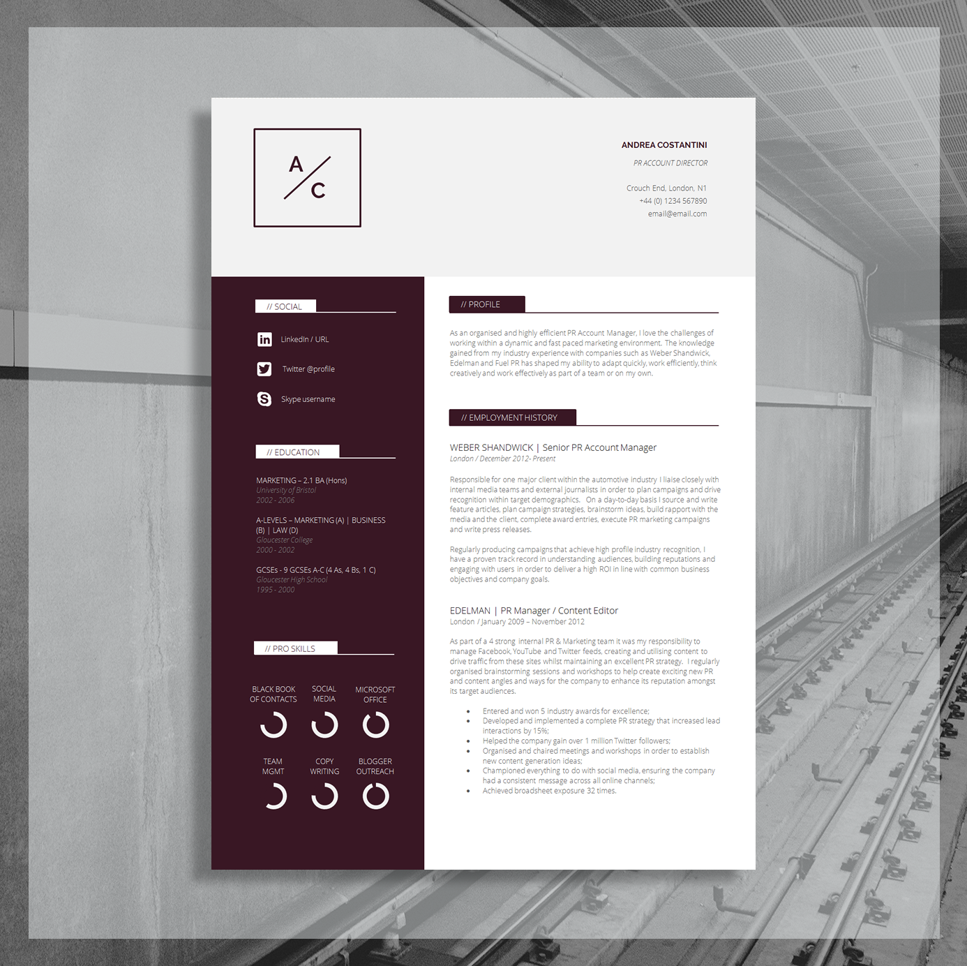 Download this Professional Finance Resume Here.