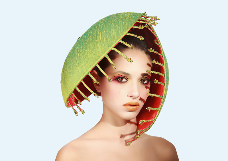 Hats off to Hats |Oversized Venus Fly Trap | Spielzeug Welten Museum Basel