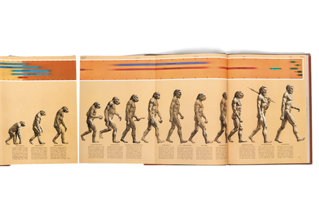 Rudolph Zallinger's March of Progress,  Early Man , Time-Life Books, 1965