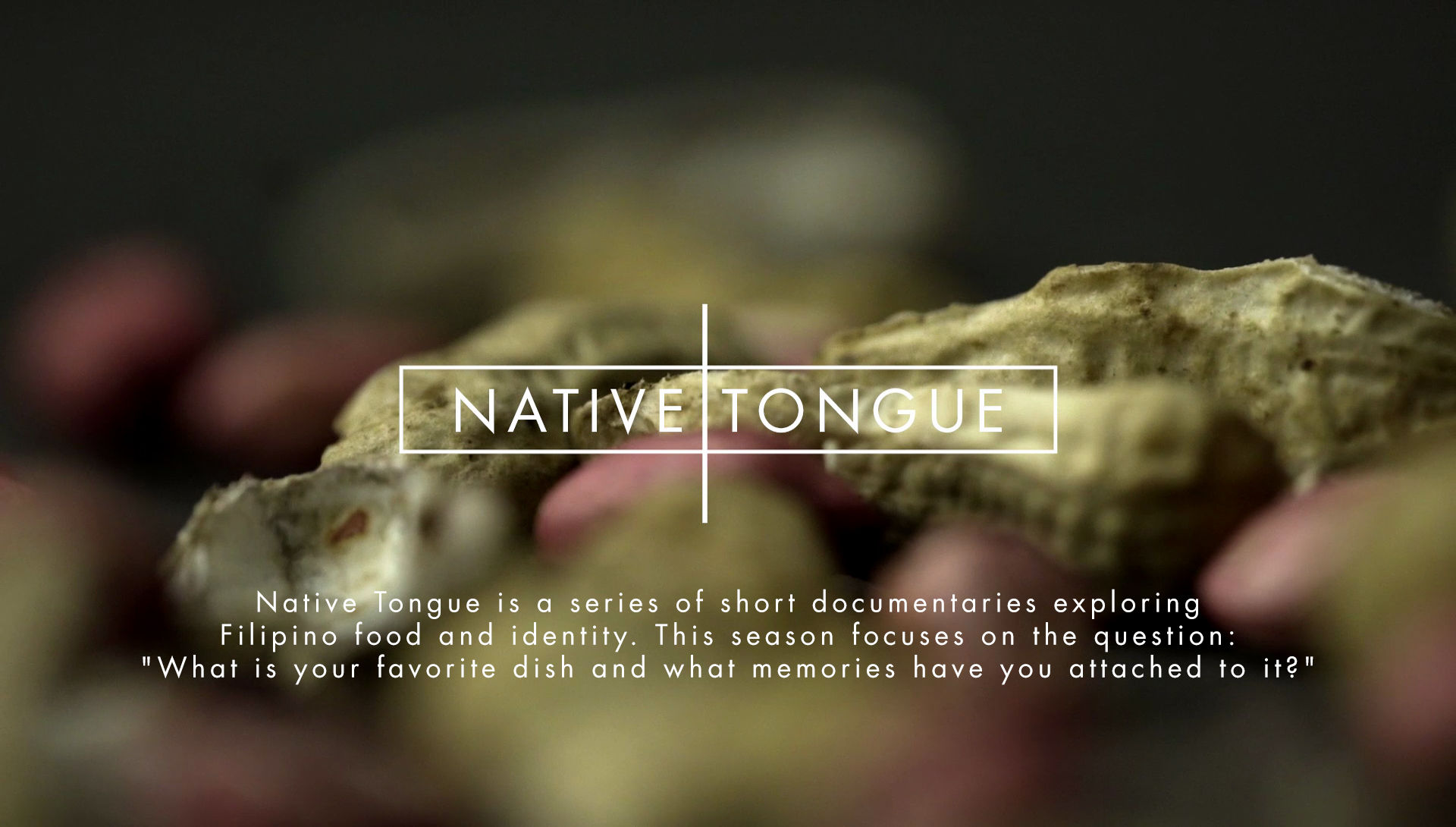 nativetongue-header.jpg