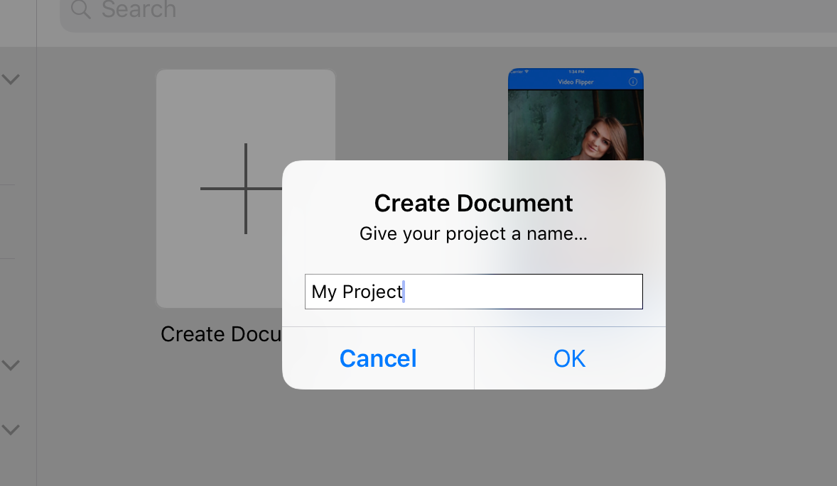 Then give your document a name (probably the name of your app). You can rename the document by returning to the document browser, and pressing and holding on an existing document. -