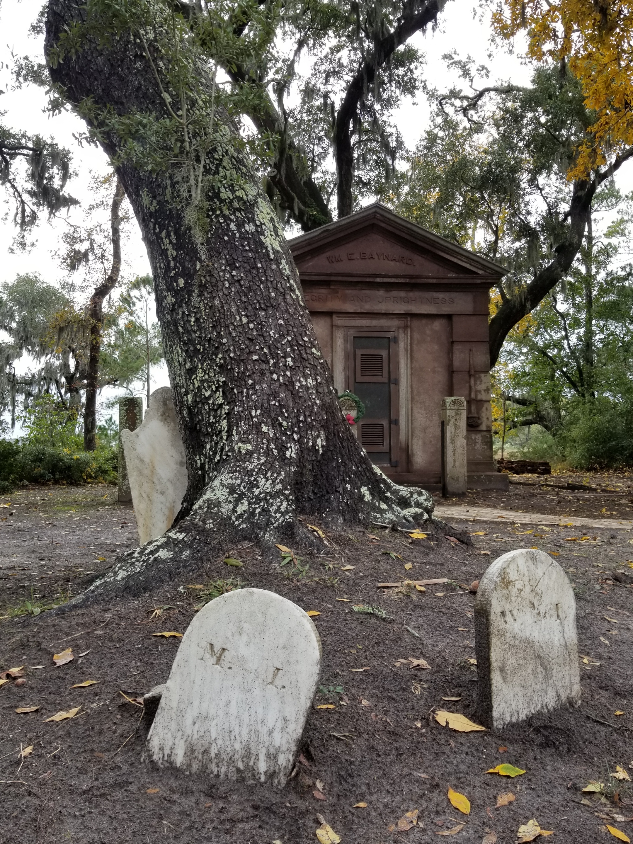 Looking more carefully, Mary and her husband William Irvine were buried side-by-side - these are their footstones.  The live oak grows from where there bodies rest together.  A touching living memorial.