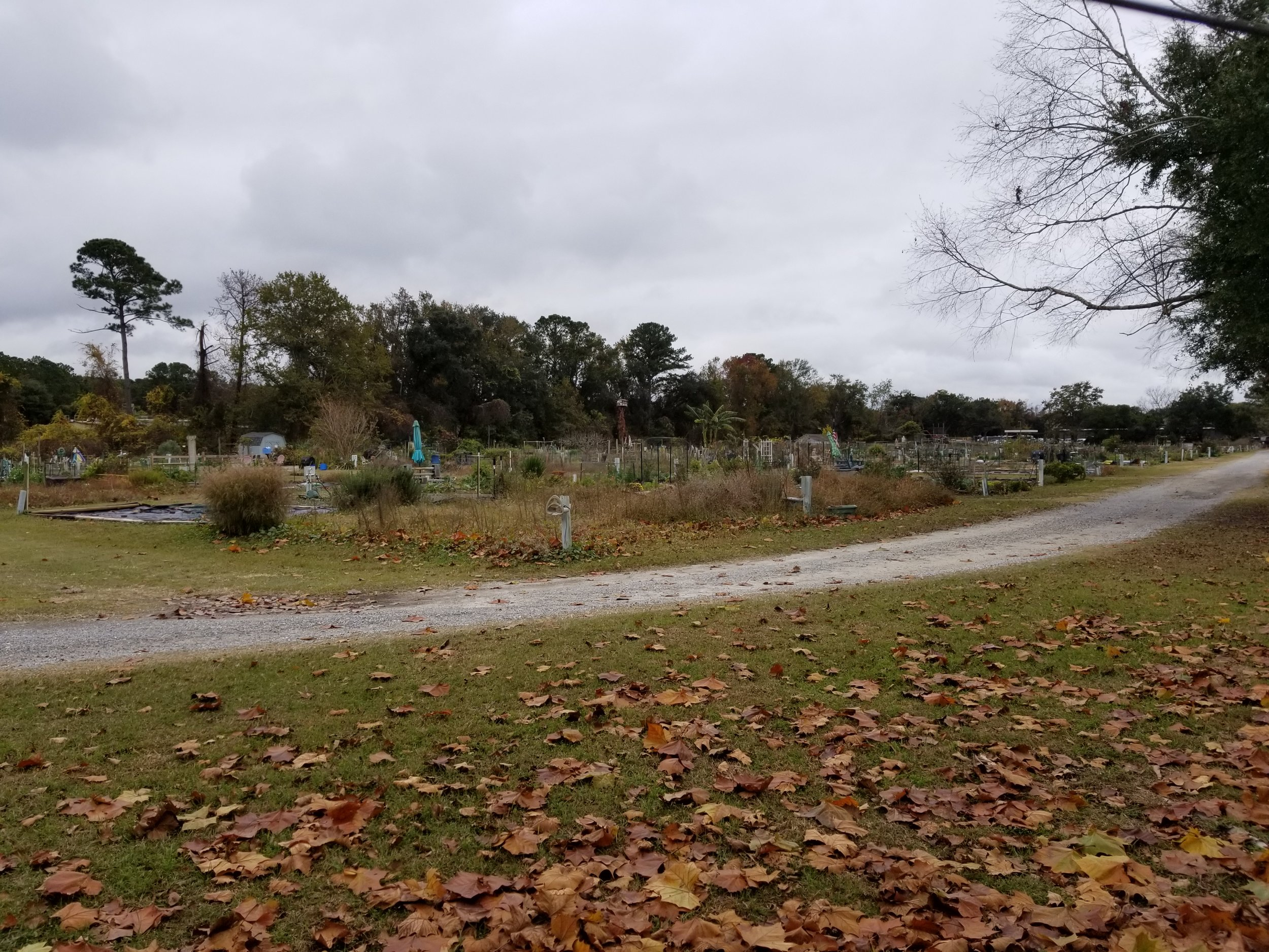 Seabrook Farm