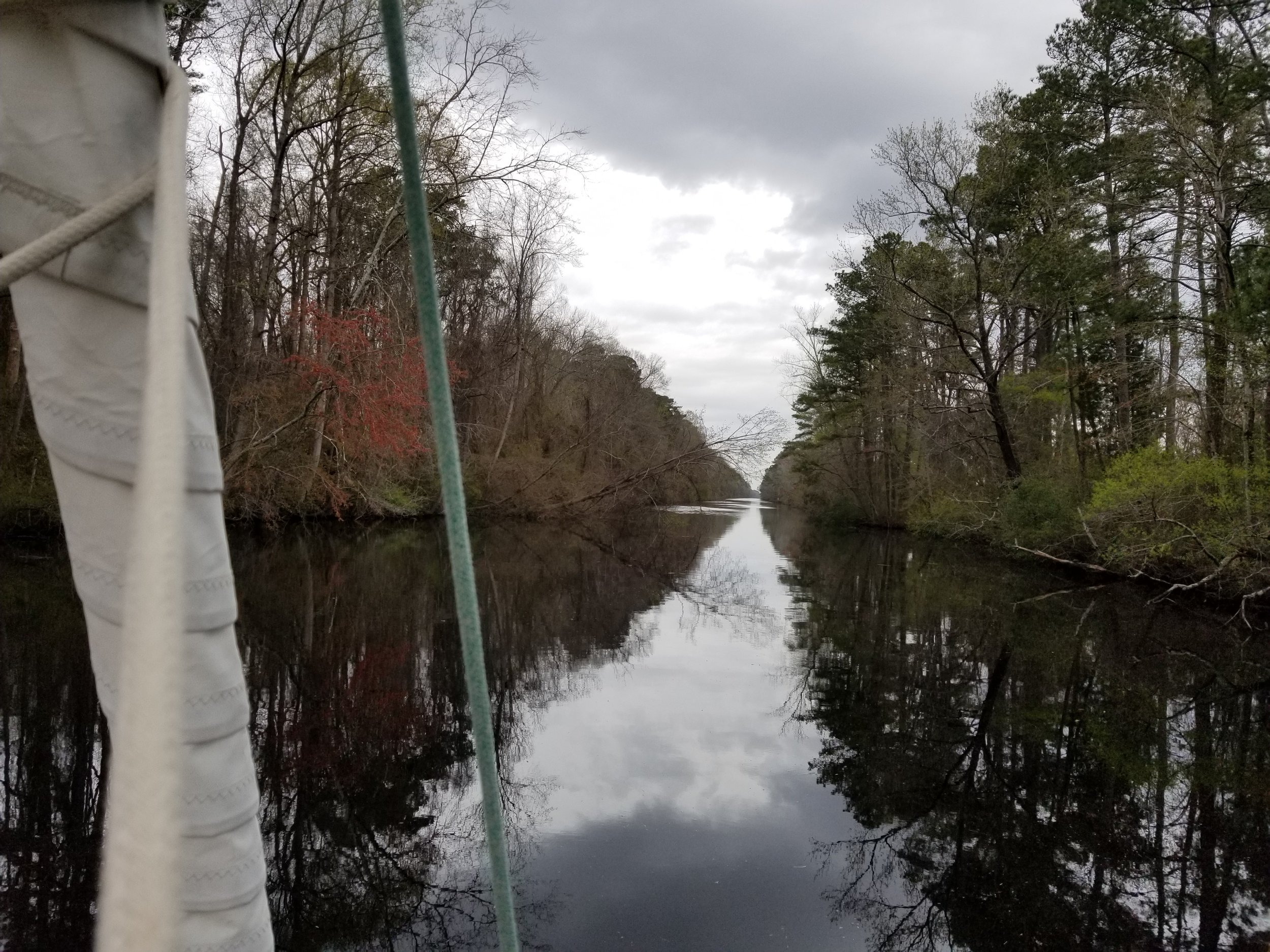 Note the tree fallen across the canal up ahead.  Dobbs had to carefully steer us close to the east bank in order to avoid its branches.