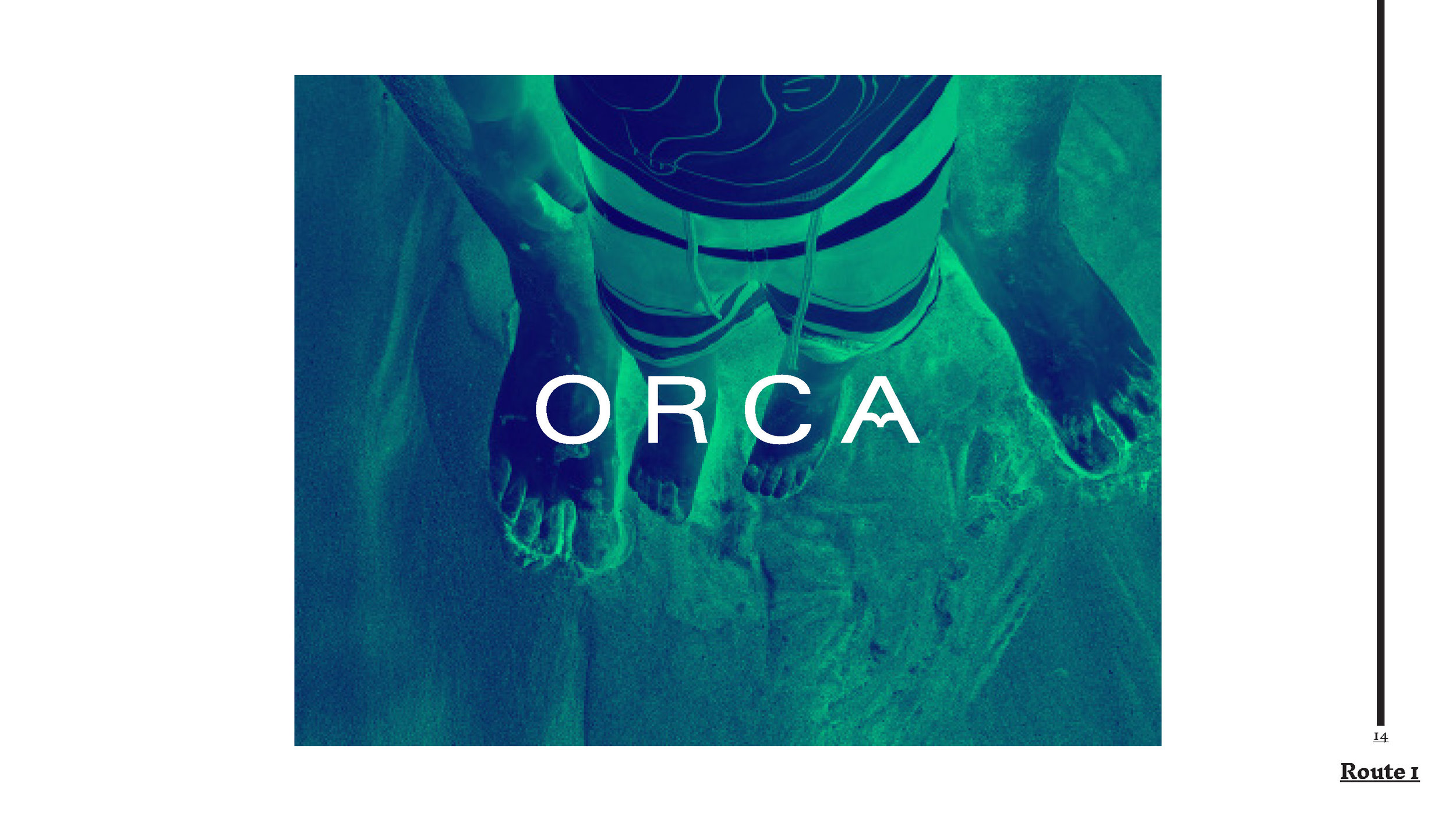 1.Orca_Presentation01_SarahMcDonnell2018_Page_14.jpg