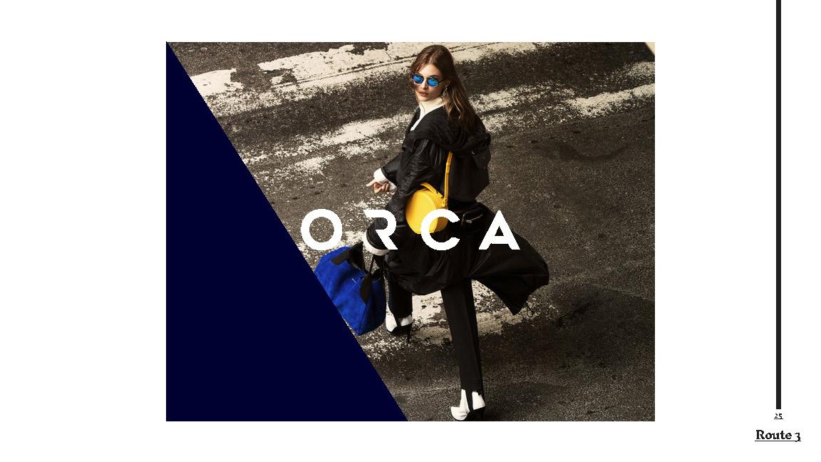 1.Orca_Presentation01_SarahMcDonnell2018_Page_25.jpg