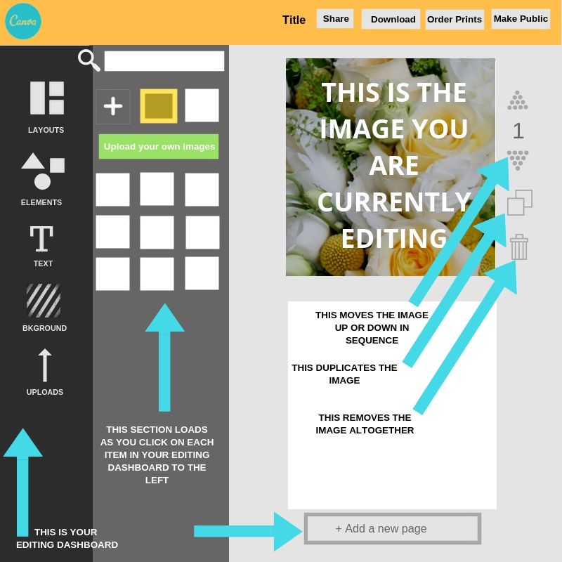 Instructions on how to edit images using Canva, by Less stress Design.