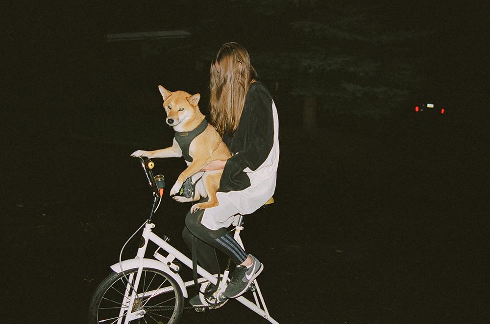 BicycleDog.jpg