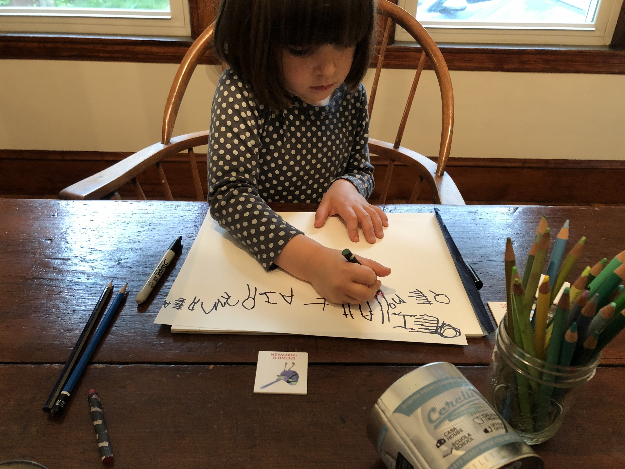 Delilah, age four, writing names of her favorite birds.