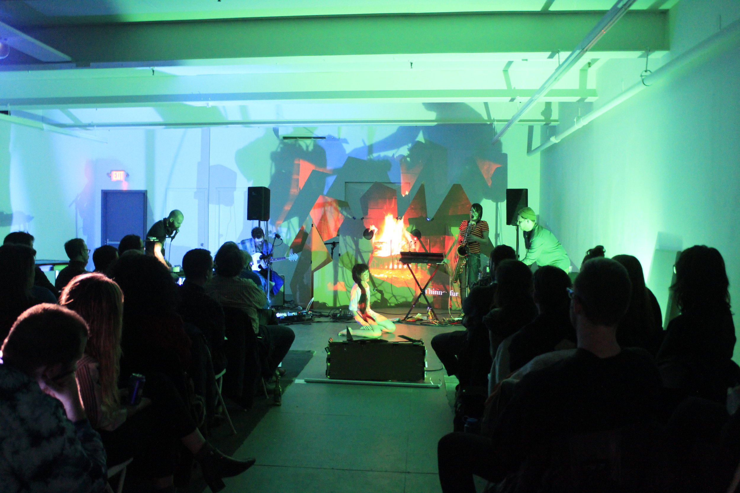 captured from Braided Sound: Brooklyn @ the microscope gallery; taken by Harmony Pilobello