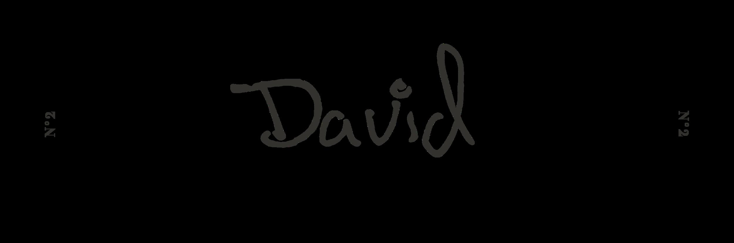 DAVID_TITRES.png