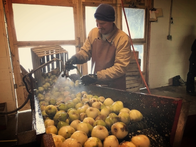 Gary Stroh washing the pears